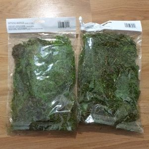 Ashland Accents - Moss kit, lot of two, Reindeer moss by Ashland